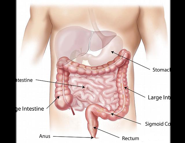 Η λειτουργική δυσπεψία μπορεί να εμφανιστεί εξαιτίας του ελικοβακτηριδίου του πυλωρού.