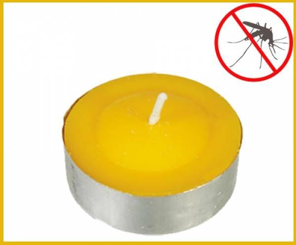 Ένας από τους μεγαλύτερους εχθρούς του καλοκαιριού είναι τα κουνούπια.