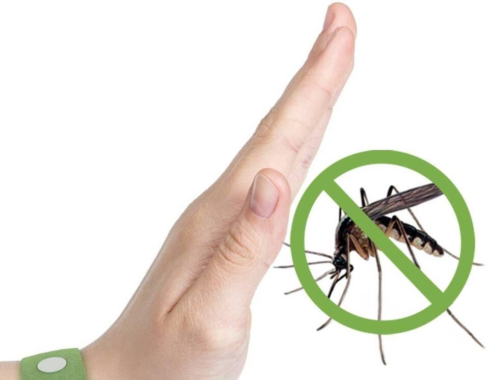 Βοήθεια, Κουνούπια!