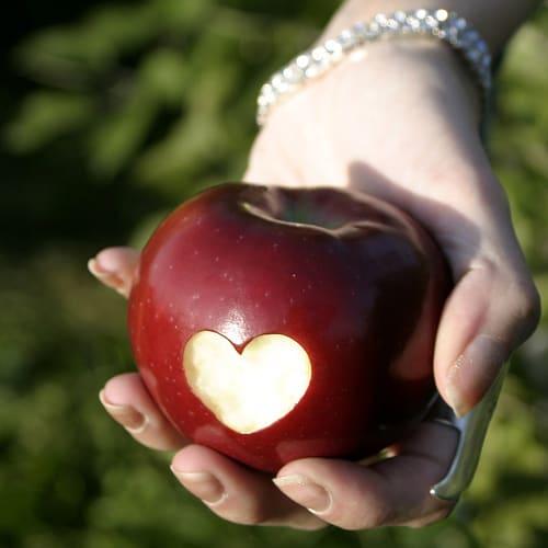 Τα Βότανα για την Υγεία της Καρδιάς σας