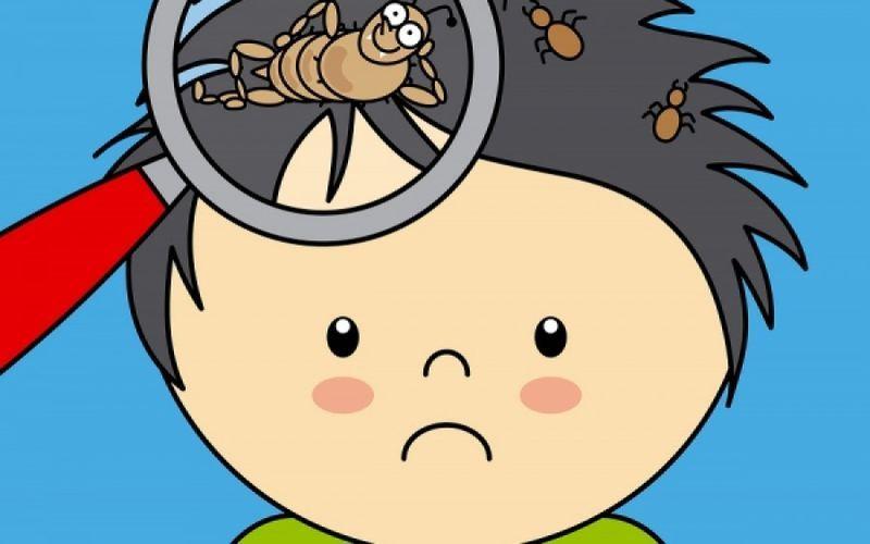 Πρόκειται για αρθρόποδα που ζουν στο τριχωτό της κεφαλής και τρέφονται με το αίμα, κυρίως παιδιών σχολικής ηλικίας, με μια συχνότητα 6-8%.