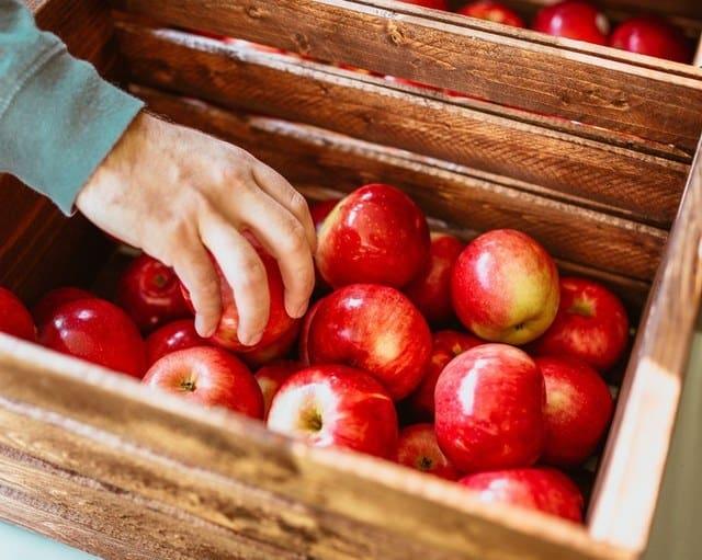 Τα μήλα συμβάλλουν και κατά της παχυσαρκίας, σύμφωνα με ερευνητές του Πανεπιστημίου της Ουάσινγκτον.