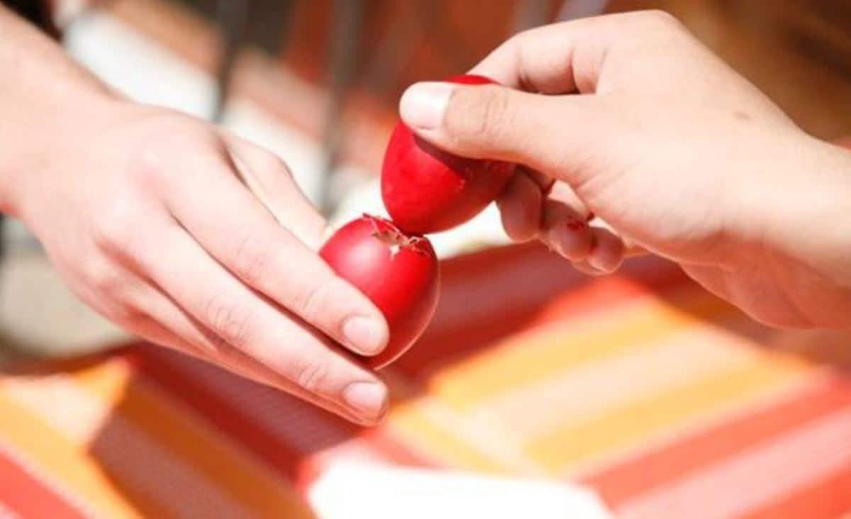 Κατά την προμήθεια νωπών αυγών, πρέπει να εξετάζετε τις προβλεπόμενες ενδείξεις στη συσκευασία, όπως την ημερομηνία ωοτοκίας, την ημερομηνία συσκευασίας ή ωοσκόπησης και την ημερομηνία λήξης.