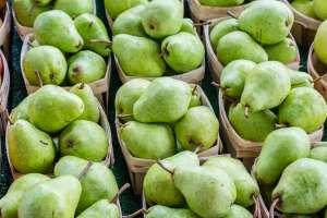 Το αχλάδι, όπως και το πολύ δημοφιλές μήλο είναι δυο φρούτα που καταναλώνονται ιδιαίτερα τους φθινοπωρινούς και τους χειμερινούς μήνες.